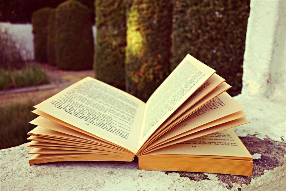English Language Arts / High School ELA Course Descriptions